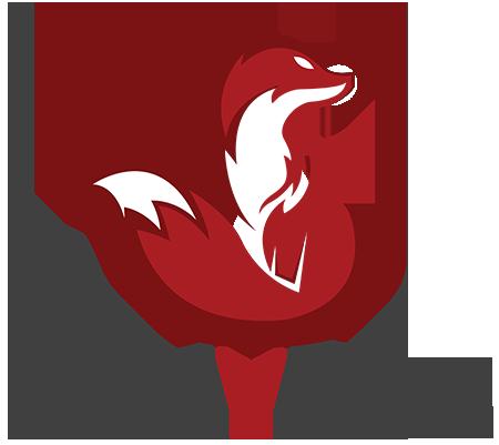 LumyFox vente en ligne de kit panneau solaire